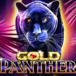 gold-panther-qqsutera