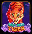 wild-wild-tiger
